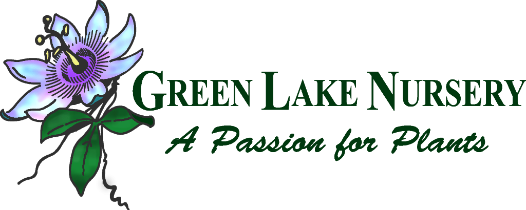Green Lake Small color logo